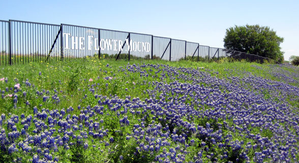 Flower Mound Apartments